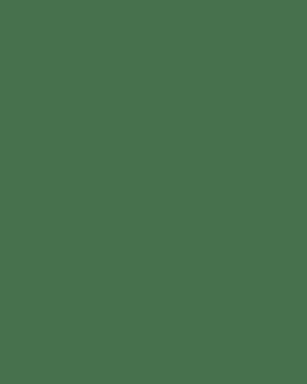 JO3860 400mm Standard Ruler - Clear Metric